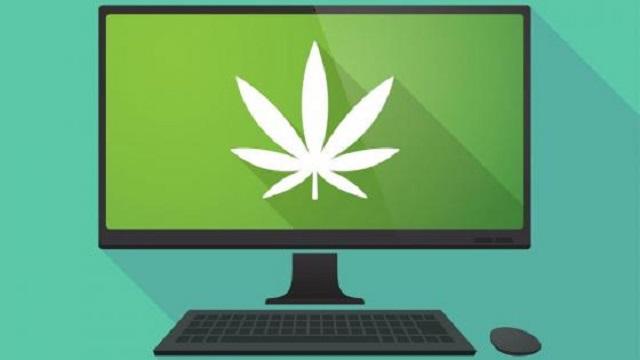 Cannabis WCSS